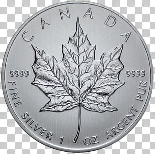 150th Anniversary Of Canada Canadian Silver Maple Leaf Canadian Gold Maple Leaf PNG
