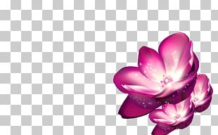 Shulin District Pink Purple Flower PNG
