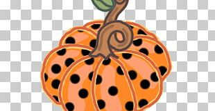 Pumpkin Drawing Autumn Illustration PNG