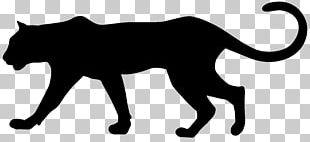 Cougar Black Panther Leopard PNG
