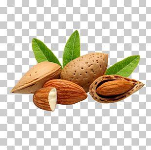Bajaj Almond Drops Hair Oil Nut Bajaj Almond Drops Hair Oil Food PNG