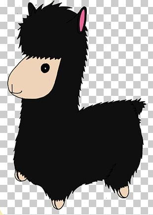 Llama Pony Alpaca Camel Pack Animal PNG
