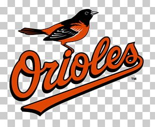 Oriole Park At Camden Yards Baltimore Orioles MLB American League East Toronto Blue Jays PNG