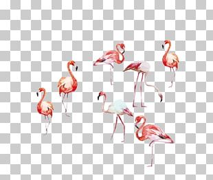 Flamingo Watercolor Painting Art Illustration PNG