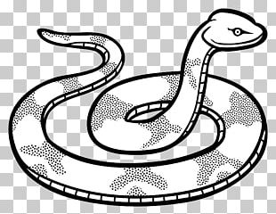 Snake Black And White Drawing Black Mamba PNG