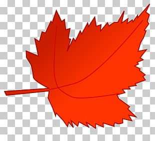 Autumn Leaf Color Autumn Leaf Color Red PNG
