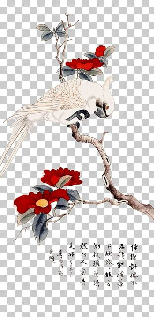 Bird-and-flower Painting Chinese Painting Painter Illustration PNG