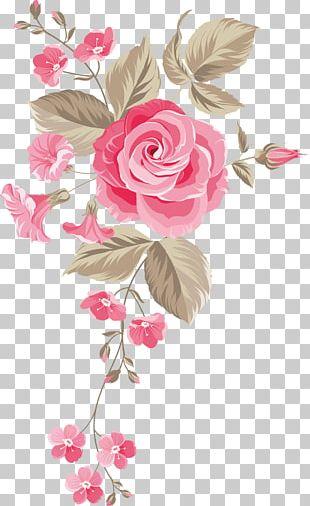 Garden Roses Centifolia Roses Floral Design Cut Flowers Flower Bouquet PNG