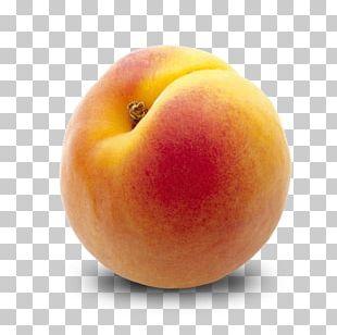 Apricot Fruit Desktop Eating Peach PNG