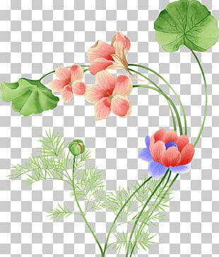 Flower Watercolor Painting Floral Design Pattern PNG