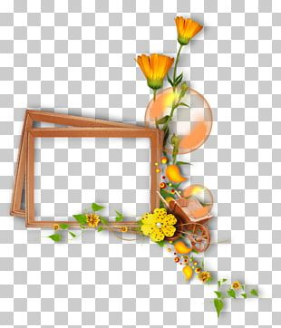Floral Design Frames Painting Flower PNG