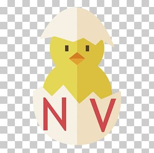 Water Bird Vertebrate PNG