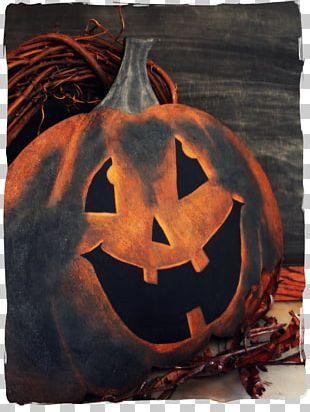 Cucurbita Pumpkin Calabaza Jack-o'-lantern Email PNG
