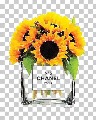 Common Sunflower Flower Bouquet Stock Photography PNG