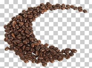 Coffee Bean Espresso Quotation Caffeinated Drink PNG