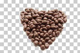 Coffee Chocolate Chip Cookie Chocolate Cake PNG