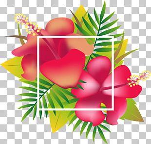 Header Floral Design Tropics PNG
