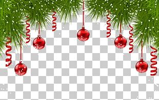 Fir Christmas Ornament Christmas Tree PNG