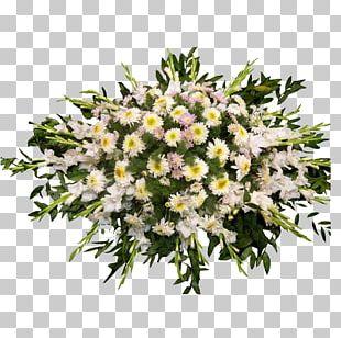 Floral Design Cut Flowers Flower Bouquet Aster PNG