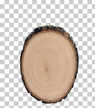 Table Wood Carving Lindens Rondin De Bois PNG