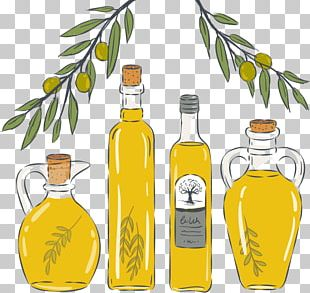 Olive Oil Cooking Oils Fat PNG