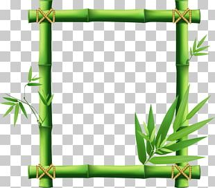 Frame Bamboo PNG