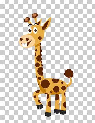 Euclidean Northern Giraffe Cartoon PNG