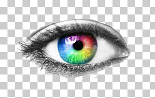Human Eye Eye Examination Visual Perception PNG