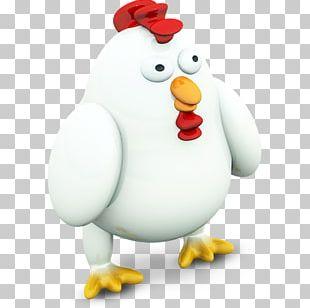 Chicken Bird Penguin Galliformes Computer Icons PNG