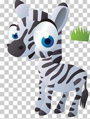 Z For Zebra Letter Shapes PNG