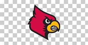 Louisville Cardinals Men's Basketball University Of Louisville NCAA Men's Division I Basketball Tournament Louisville Cardinals Football Sport PNG