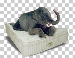 Mattress Bedroom Furniture Sets Indian Elephant Headboard PNG