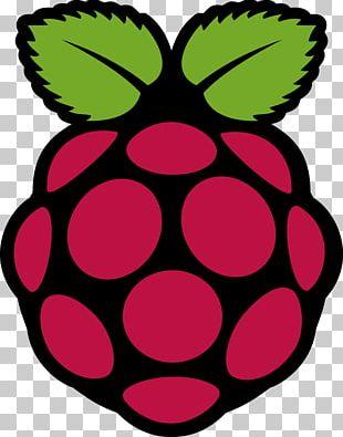 Raspberry Pi Foundation Raspbian Single-board Computer Logo PNG