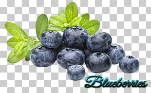 Juice Blueberry Bubble Tea Popping Boba PNG
