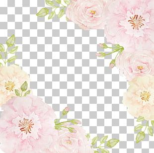 Pink Flowers Beach Rose PNG