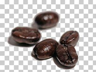 Coffee Bean Espresso Tea Coffee Bean PNG