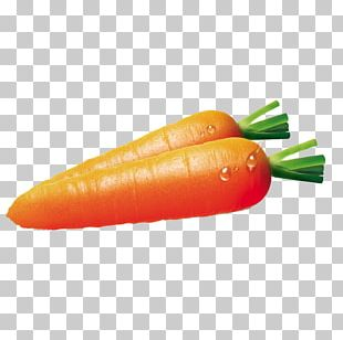 Carrot Vegetable Bell Pepper Fruit Carotene PNG