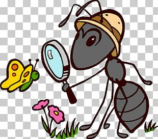 Ant Insect Cartoon PNG
