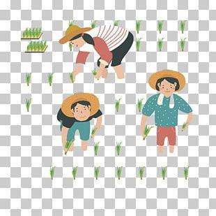 Farmer Rice Transplanter Uad6dub9bdub18duc0b0ubb3cud488uc9c8uad00ub9acuc6d0 Agriculture PNG