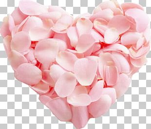 Unrequited Love Heart Romance Friendship PNG