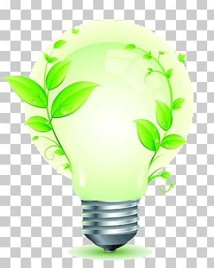 Energy Conservation Electricity Incandescent Light Bulb Power PNG