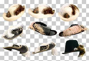 Hat Headgear PNG