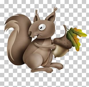 Squirrel! FREE Cartoon Illustration PNG