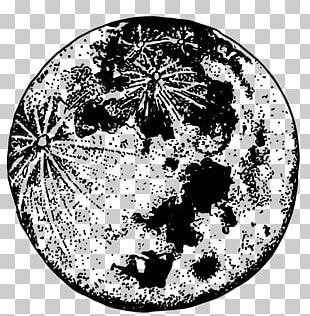 Lunar Phase Full Moon Month Lunar Calendar PNG