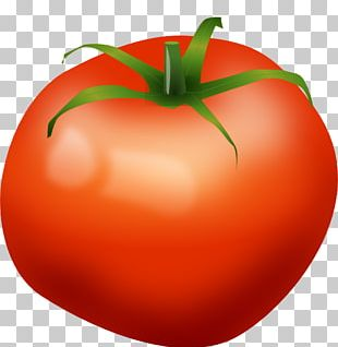 Tomato Vegetable Food PNG