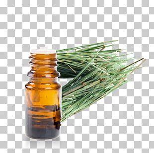 English Lavender Essential Oil Eucalyptus Oil Huile Essentielle De Menthe PNG