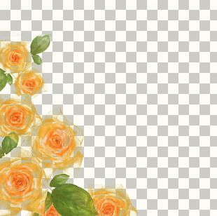Rose Watercolor Floral Border Albums PNG