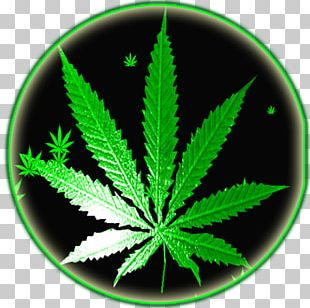 Cannabis Android Application Package Rastafari Reggae PNG