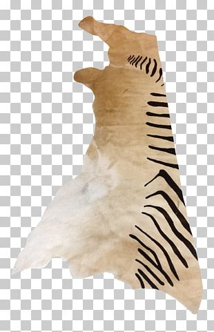 Tail Fur Neck PNG