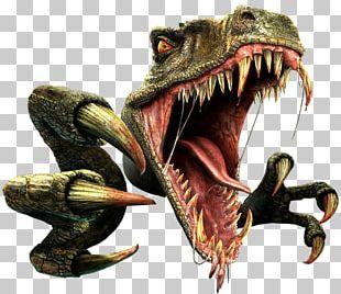 Tyrannosaurus Velociraptor Dinosaur Triceratops PNG